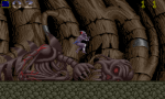Shadow Of The Beast - Amiga