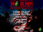 Worms: The Director's Cut - Screenshot