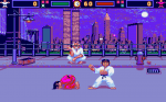 International Karate - Screenshot